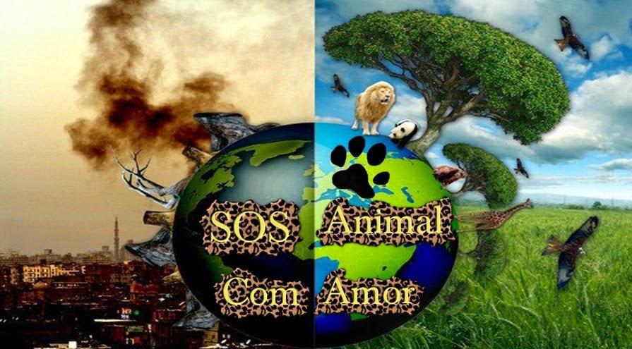 SOS Animal com Amor - Dicas sobre animais