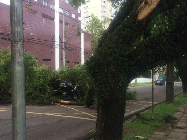Acidente aconteceu por volta das 11h desta segunda-feira (30), em Curitiba (Foto: João Mita/Arquivo pessoal)
