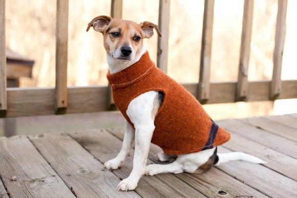 Como fazer roupa de cachorro 8
