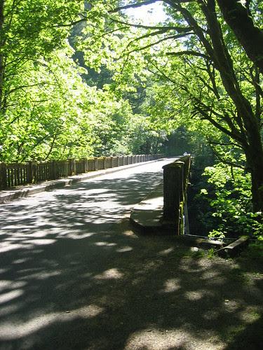 Bridge at Latourell Falls
