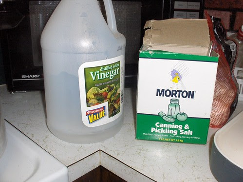 Vinegar and Salt