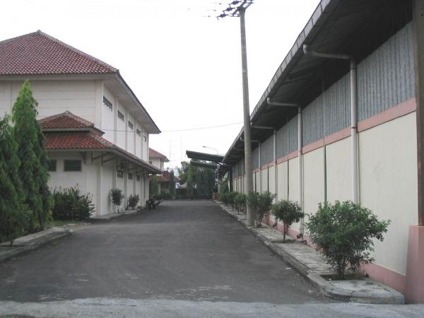 PT Jati Vision Raya (JAVA) Cirebon manufacture of rattan ...