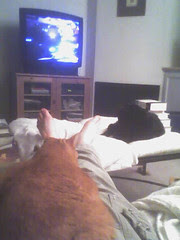 this is how we watch TV