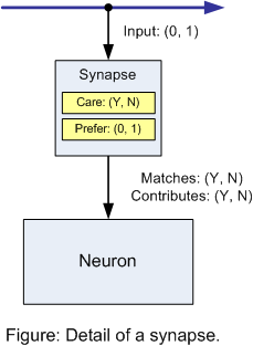 Figure: Detail of a synapse.