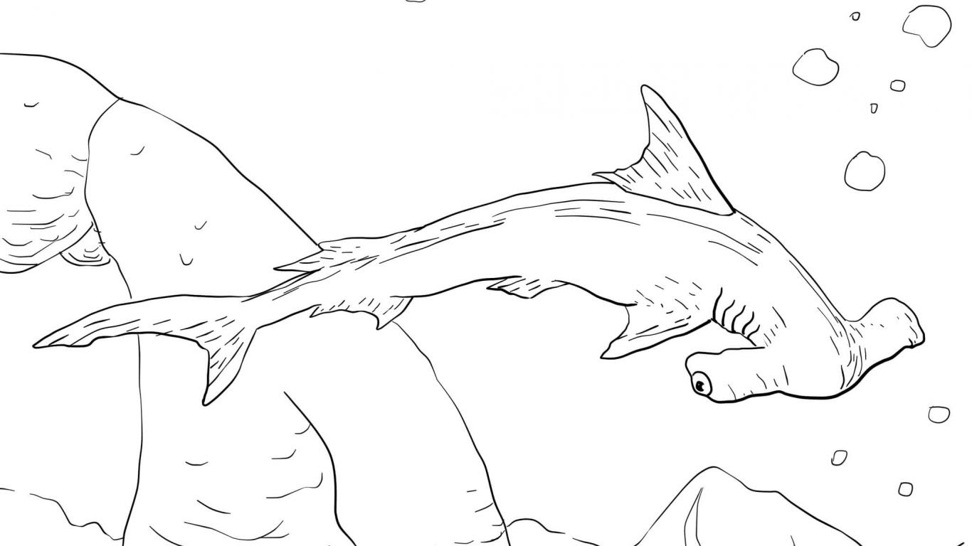 Hungry Shark Evolution Coloring Pages at GetColorings.com ...