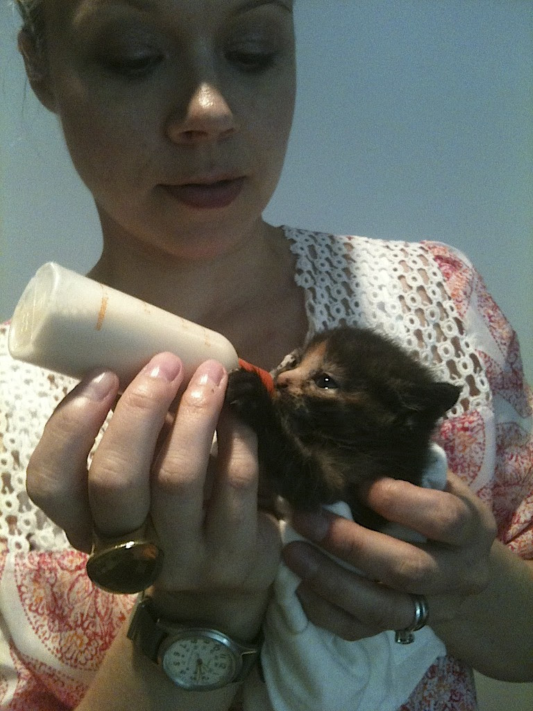 Amelia bottle feeding a foster kitten