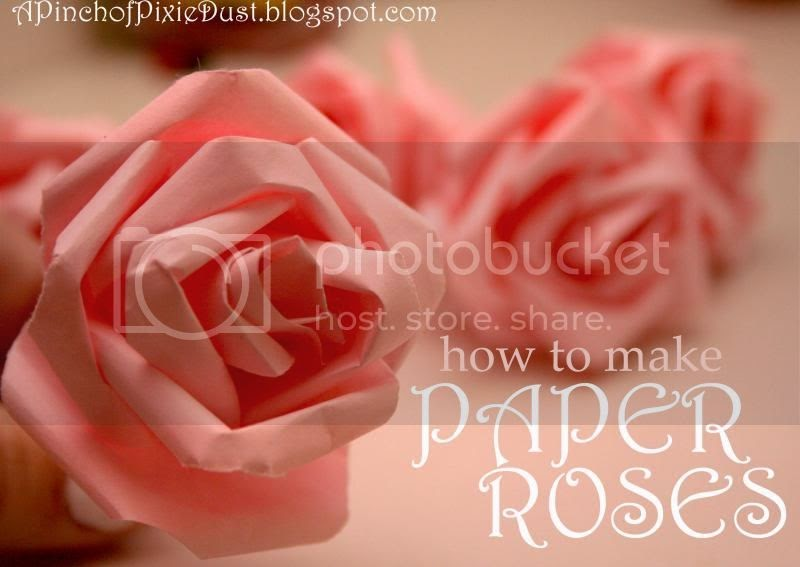 Song: Go, Lovely Rose! by Edmund Waller: poem analysis