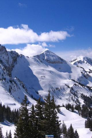 Best Ski Resort Alta Utah Devil S Castle Mt Sugarloaf And Mt Baldy 320x480 Iphone Itouch Wallpaper 2