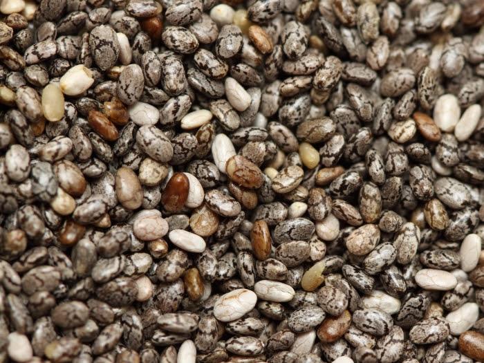 chia-semente-dama-turquesa