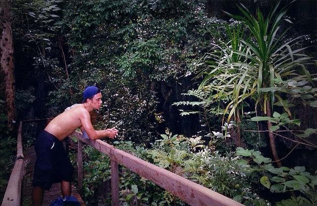 11 2013 04 25_monkey trail.png