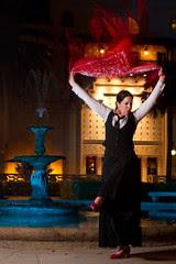 Flamenco del Sol 9