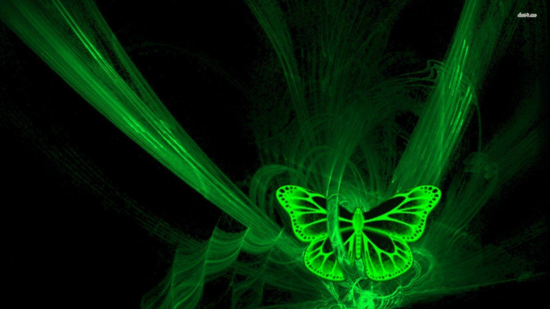 Green Butterfly Wallpapers - Wallpaper Cave