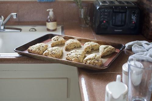 cranberry-cherry scones