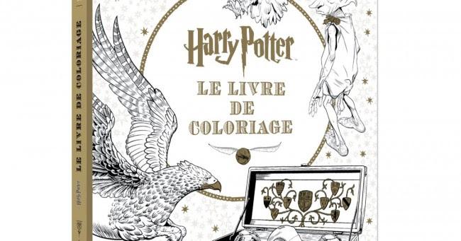 Un Livre De Coloriage Harry Potter Topito