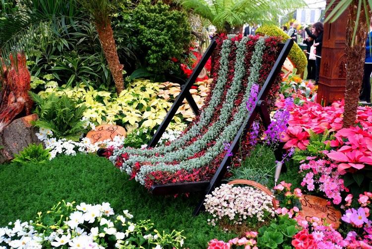 jardin-ornement-chilienne-fleuri-fleurs-roses-mauves