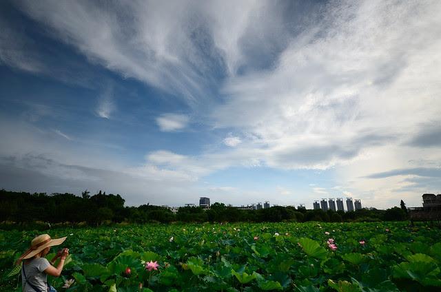 2012.06.09 台北 / 台大安康農場