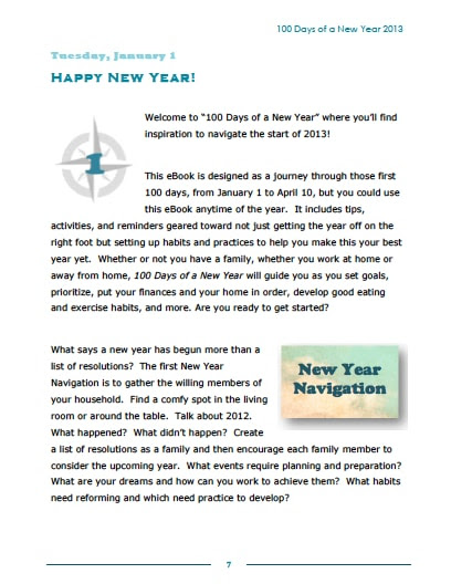 100 Days of a New Year 2013 eBook