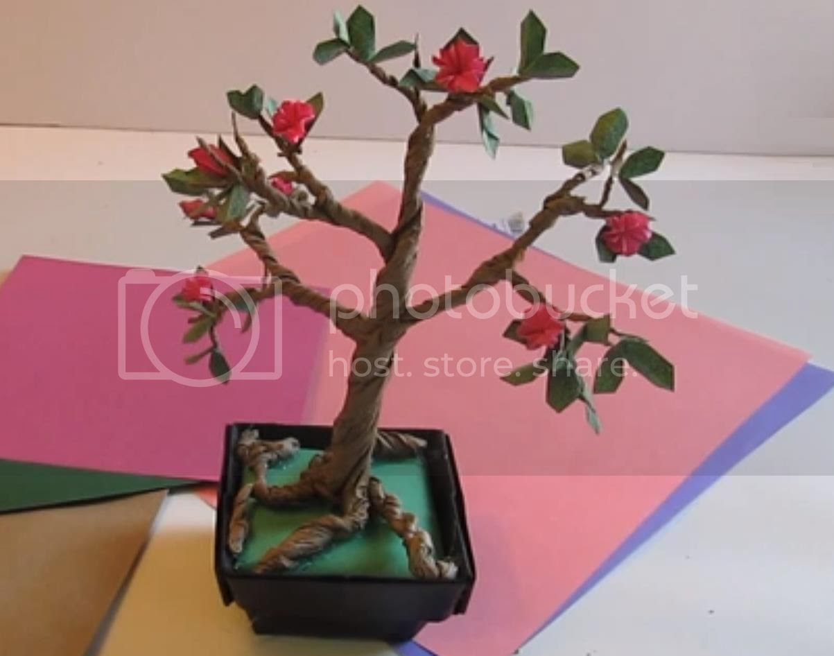 photo the-origami-bonsai-tree002_zpsd5983d15.jpg