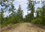 Missouri, Shannon County, 10.76 Acre Thunder Mountain Ranch, Lot 34. TERMS $265/Month