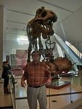 me and T-Rex