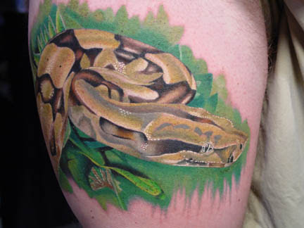 Scary Animal Pictures on View Full Size   More Animal Tattoos Gallery 3d Snake Tattoos   Source