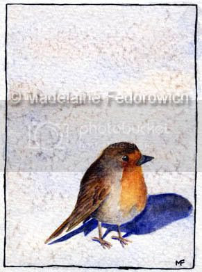 Baby Robin ACEO