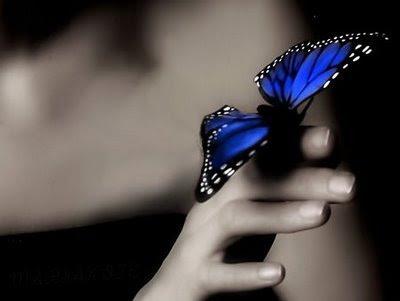 Mariposa-azul1_large