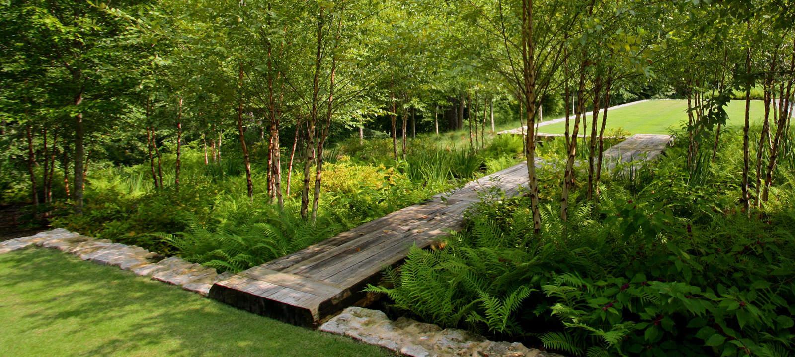 Woodland Rain Garden