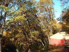 Fall yurt
