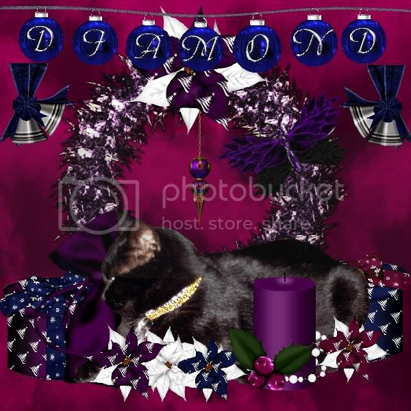 Miss Diamond,Holiday Glitter,Holly Daze,Domestic Cat,House Panther,Happy Holidays,Black Cat