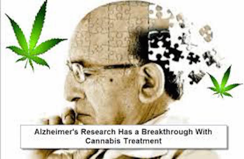 Image result for Researchers Discover Marijuana's THC Blocks Damaging Proteins Causing Alzheimer's