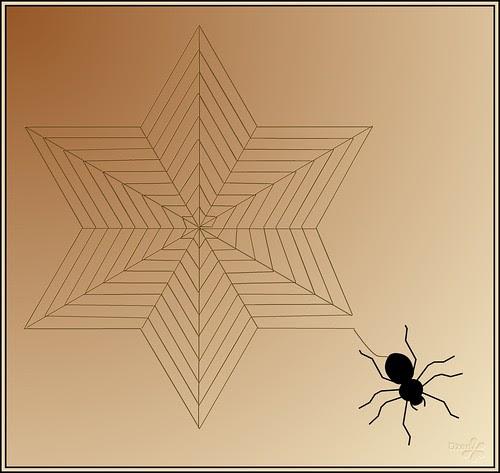 Star Web / Kosher Spider