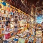 London Bookshops Unplug From Internet And Readers Cheer
