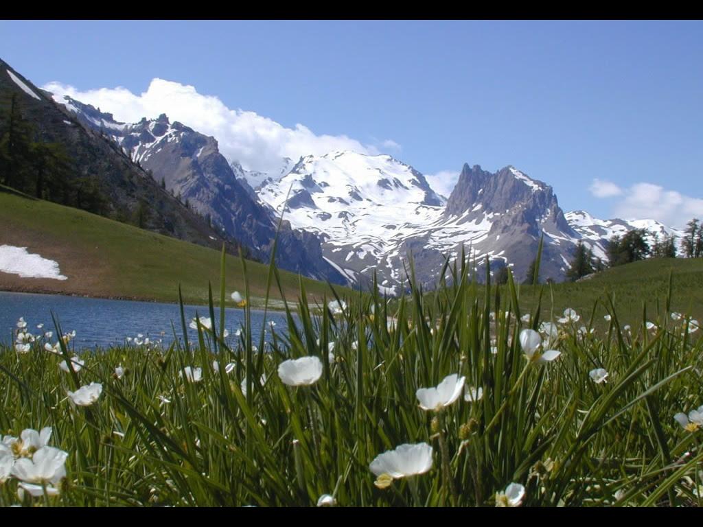 nature scenery paysage printemps montagne