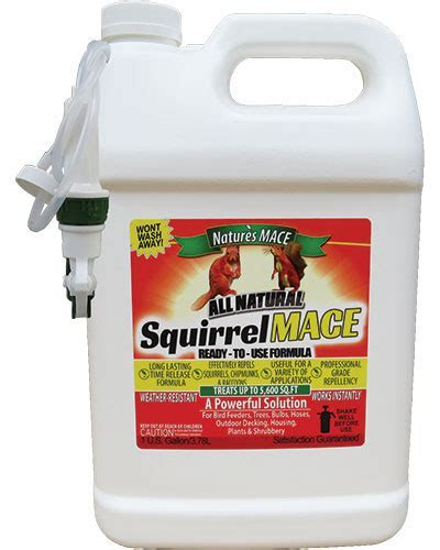 Squirrel MACE 1 Gallon Ready to Use Spray, Treats 5,600 Sq.Ft   Nature's MACE