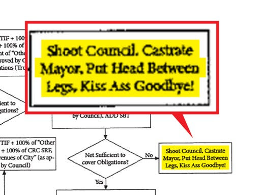 Carmel council flowchart