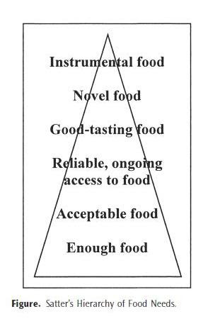 Hierarchy of food needs, in order: enough food, acceptable food, reliable ongoing access to food, good-tasting food, novel food, and instrumental food.