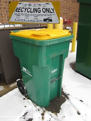 Waste Management Recycling Cart