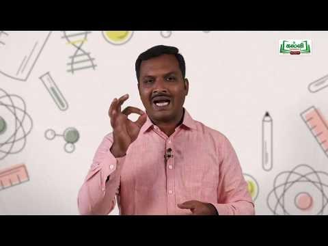 NEET JEE Chemistry வேதியியல் Coordination Compounds  அணைவுச் சேர்மங்கள் Kalvi TV