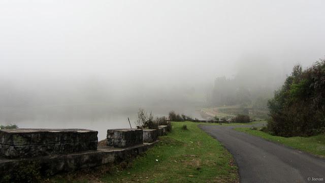 Winding in mist
