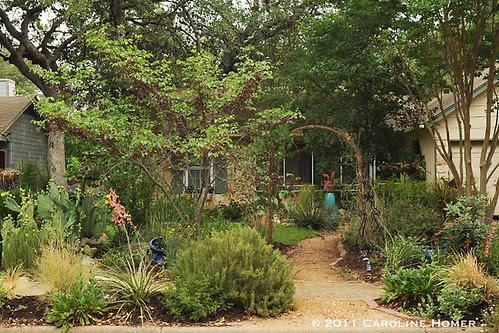 Rebecca Matthews' garden