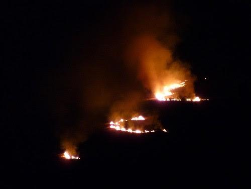 P1040120 - Grass fire at Llangennith, Gower