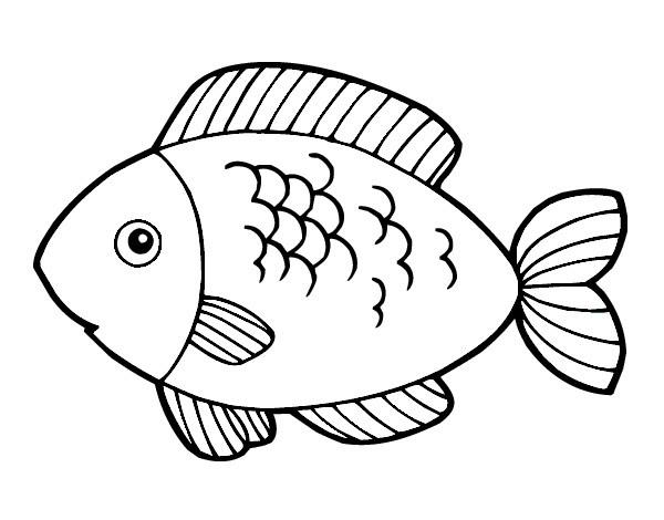 Disegni Da Colorare Con I Pesci Tropicali Vettoriali Stock