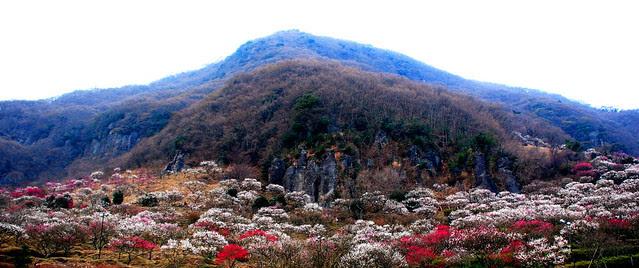 makuyama park
