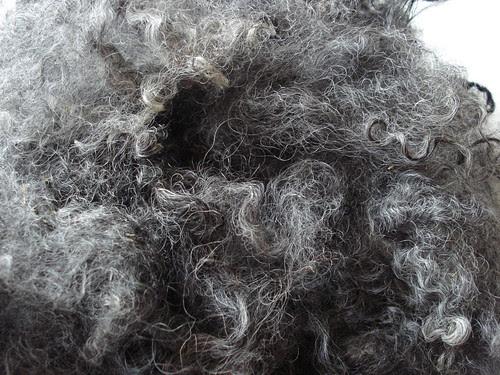 Washed Gotland silver gray sheep locks British wool