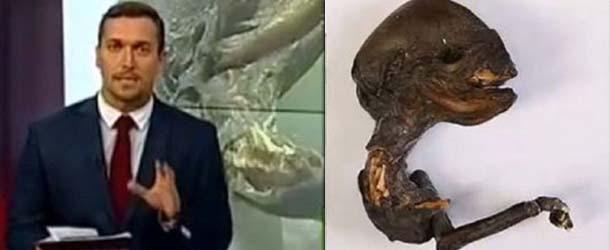 Científicos desconcertados por el descubrimiento del cadáver de un extraterrestre cerca de una central nuclear en Rusia