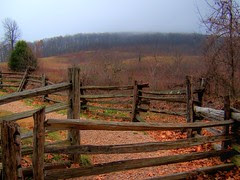 Switch-back Gate and the Meadow Beyond