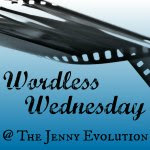 Wordless Wednesday on The Jenny Evolution