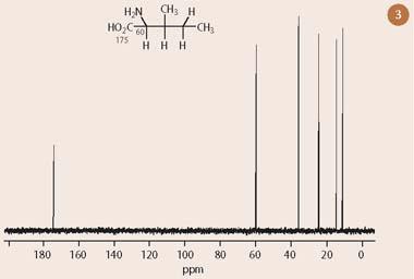 Fig 3 One dimensional 13C-nmr spectrum of isoleucine