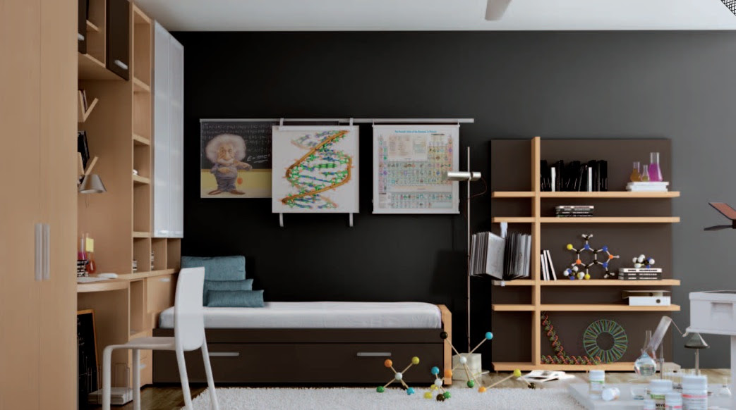 Themed Teen Rooms (For Artist, Dancer, Rockstar and Scientist!)